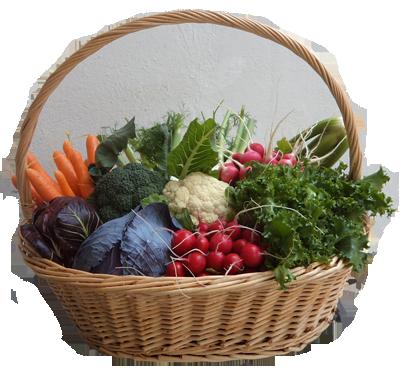 la tua spesa di verdure di stagione in Campidano