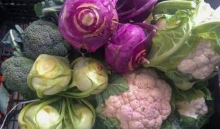 verdura-agricoltore-monastir-cagliari-8