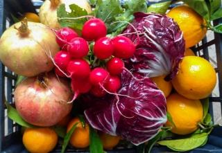 verdura-agricoltore-monastir-cagliari-9