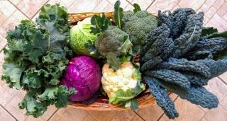 verdure-agricoltore-monastir-cagliari-1